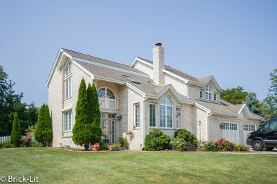 Homer Glen Single Family Home New: 17226 South Heritage Drive
