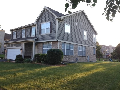 Vernon Hills Single Family Home New: 1248 Maidstone Drive