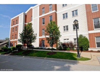Batavia Condo/Townhouse Contingent: 218 North Water Street #301