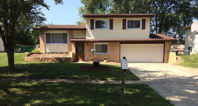 Bolingbrook Single Family Home New: 313 Lyons Drive