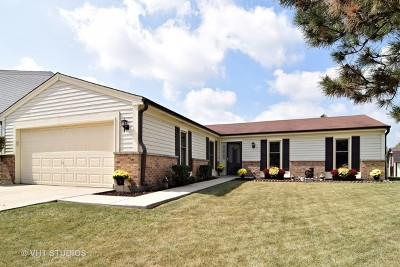 Carol Stream Single Family Home New: 1089 Buckskin Lane