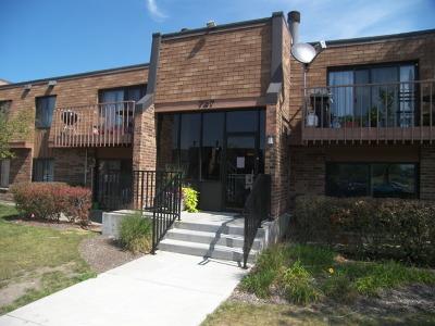 Schaumburg Condo/Townhouse New: 727 Killarney Court #2C