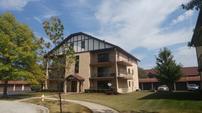 Tinley Park Condo/Townhouse New: 17951 Royal Oak Court #3S