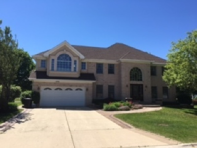 Schaumburg Single Family Home New: 875 Spring Valley Court