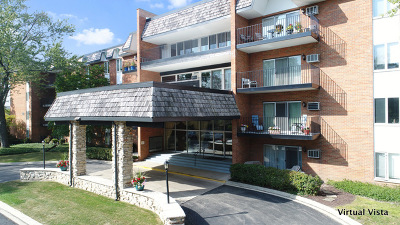 Downers Grove Condo/Townhouse Re-activated: 4225 Saratoga Avenue #210B