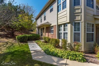 Crystal Lake Condo/Townhouse New: 522 Palm Court #A