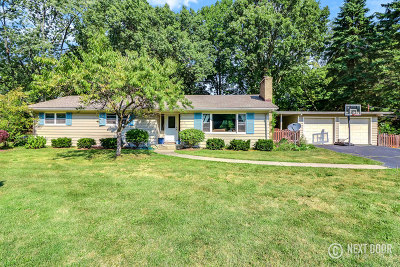 Naperville Single Family Home New: 1199 Oswego Road