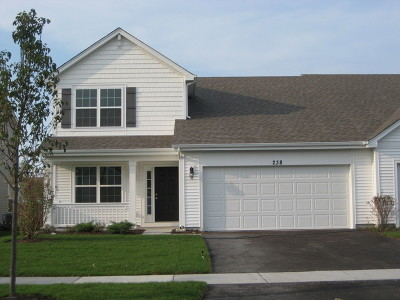 Pingree Grove Condo/Townhouse New: 238 Norfolk Lane