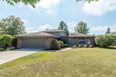Orland Park Single Family Home New: 14105 Garavogue Avenue