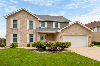 Bartlett IL Single Family Home New: $369,900