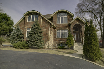 Burr Ridge IL Single Family Home New: $634,900
