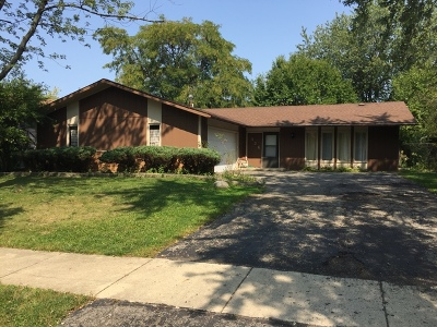 Bolingbrook Single Family Home For Sale: 326 Rockhurst Road