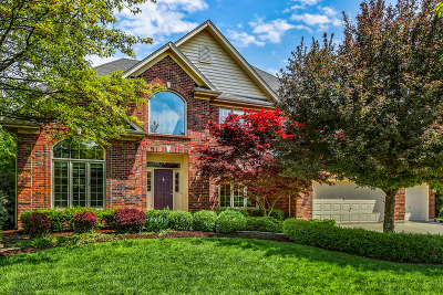 Naperville Single Family Home New: 4448 Esquire Circle