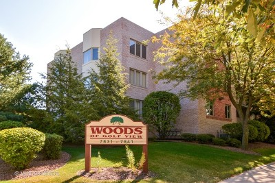 Orland Park Condo/Townhouse New: 7831 West 157th Street #302