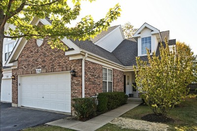 Du Page County Condo/Townhouse New: 710 Citadel Drive