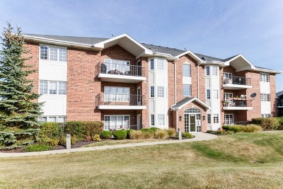Palos Heights, Palos Hills Condo/Townhouse New: 13149 Forest Ridge Drive #1A
