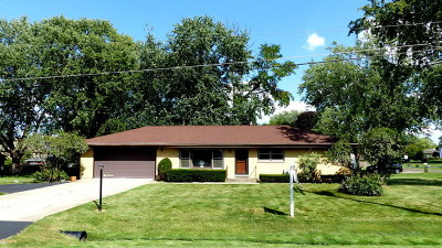 Schaumburg Single Family Home New: 400 East Monterey Avenue