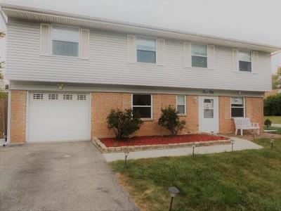 Bolingbrook Single Family Home New: 350 Fleetwood Avenue