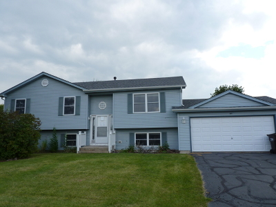 McHenry Single Family Home New: 201 Inverness Trail
