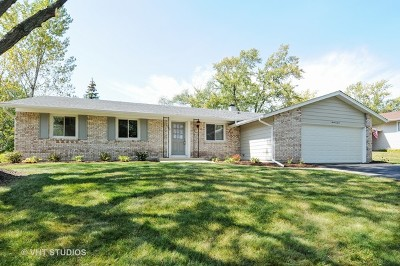 Bolingbrook Single Family Home New: 707 Dorchester Drive