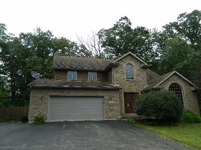 New Lenox Single Family Home New: 740 North Schoolhouse Road