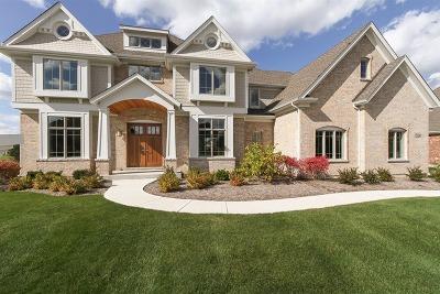 St. Charles Single Family Home New: 5n134 Prairie Rose Drive