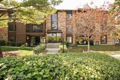 Tinley Park Condo/Townhouse New: 7501 175th Street #21