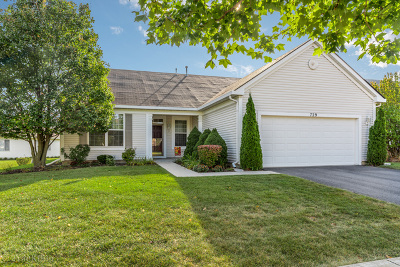 Romeoville Single Family Home New: 729 Holland Lane
