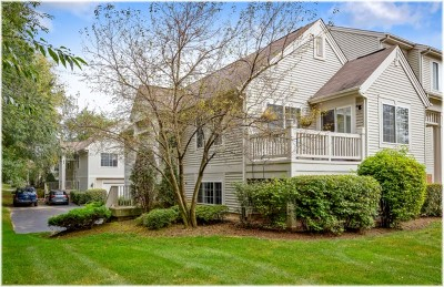Cary Condo/Townhouse New: 336 New Haven Drive