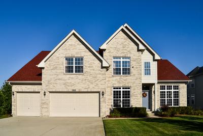 Hoffman Estates Single Family Home New: 1693 Heron Way