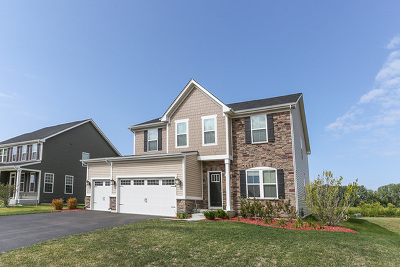 Gilberts Single Family Home New: 864 Blue Aster Parkway