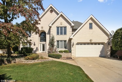 Orland Park Single Family Home New: 11058 Laurel Hill Drive