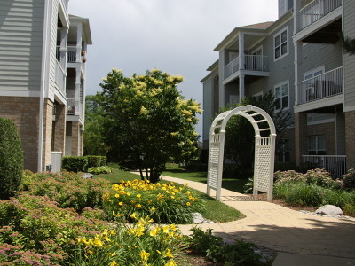 Du Page County Condo/Townhouse New: 1267 West Lake Street #101