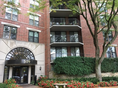 Du Page County Condo/Townhouse New: 509 Aurora Avenue #103
