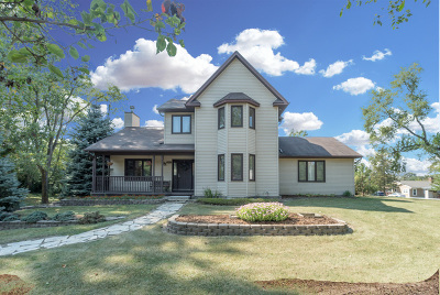 Orland Park Single Family Home New: 15800 113th Court