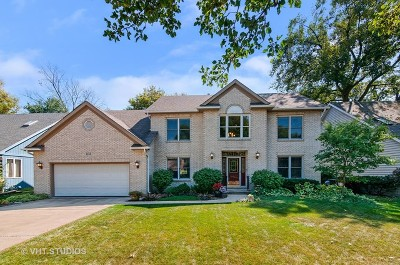 Naperville Single Family Home For Sale: 1152 Dickens Avenue