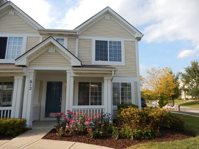 Oswego Condo/Townhouse New: 612 Lincoln Station Drive #612