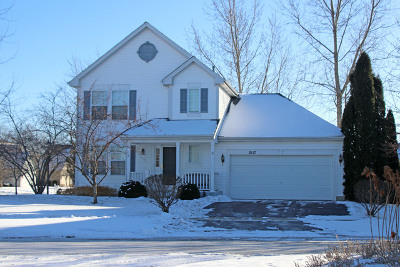 Round Lake Single Family Home For Sale: 2117 Azalea Court