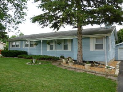 Mokena Single Family Home New: 12355 Warren Drive
