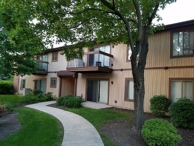 Roselle Condo/Townhouse New: 748 Rodenburg Road #2D