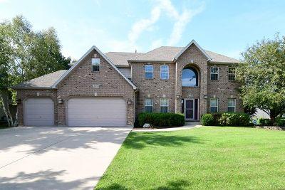 Oswego Single Family Home New: 209 Willowwood Drive