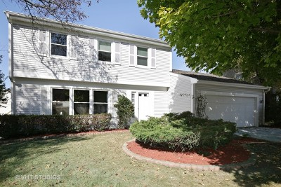 Schaumburg Single Family Home New: 630 Linsey Avenue