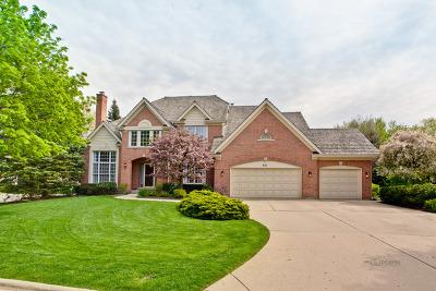 Barrington Single Family Home For Sale: 933 Lakewood Court