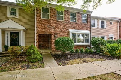 Naperville Condo/Townhouse New: 1529 Wedgefield Circle
