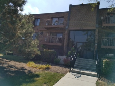 Schaumburg Condo/Townhouse New: 612 Waterford Road South #1A