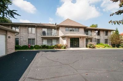 Lockport Condo/Townhouse New: 1011 Ashley Court South #2B