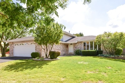 Tinley Park Single Family Home New: 8403 Budingen Lane