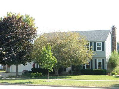 Hoffman Estates Single Family Home New: 3845 Huntington Boulevard