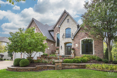 Naperville Single Family Home For Sale: 3711 Timber Creek Lane