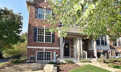 Lombard Condo/Townhouse New: 1401 South Fairfield Avenue